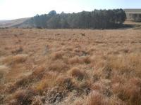 Land in Dullstroom