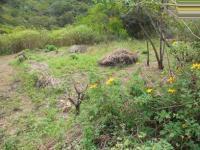 Land in Port Shepstone