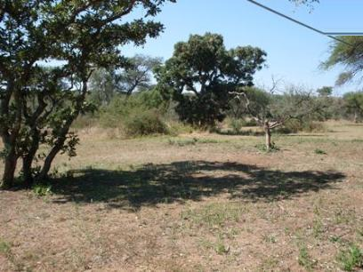 Standard Bank Repossessed Land for Sale on online auction in Hoedspruit - MR026449