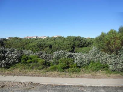 Standard Bank Repossessed Land for Sale on online auction in St Francis Bay - MR026699