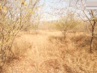 Land in Marloth Park