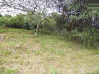 Land in Elysium