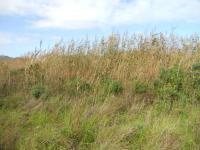 Land in Noordhoek