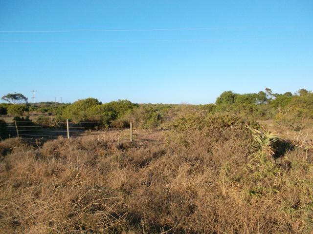 Absa Repossessed Land For Sale in Humansdorp - MR037956
