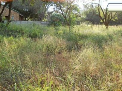 Standard Bank Repossessed Land for Sale on online auction in Barberton - MR038257