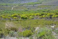 Land in Agulhas