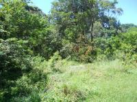 Land in Pennington