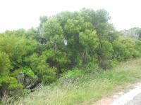 Land in Pari Park