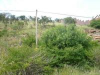 Land in Florauna