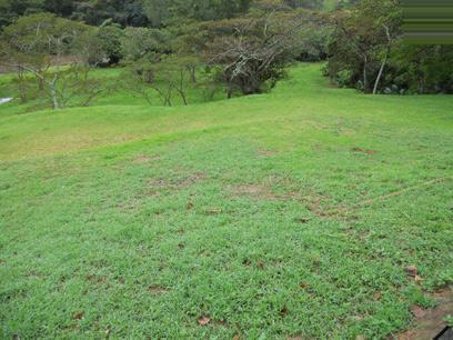Standard Bank Repossessed Land for Sale on online auction in Port Shepstone - MR048967