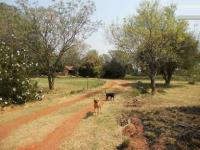 6 Bedroom 3 Bathroom House for Sale for sale in Randfontein