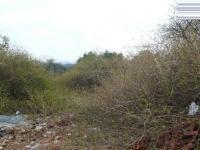 Land in Ninapark