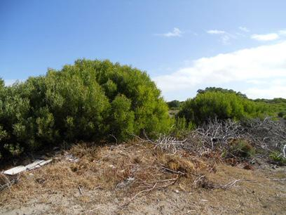Land for Sale For Sale in Agulhas - Home Sell - MR064717