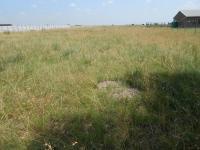 Land in Sasolburg