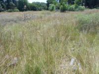 Land in Meyerton