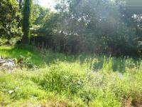 Land in Sunnyside