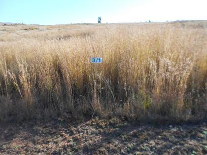 Standard Bank Repossessed Land for Sale on online auction in Dullstroom - MR070508