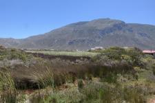 Land in Bettys Bay