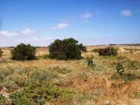 Land in Paternoster