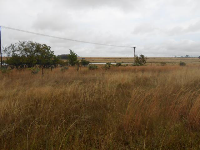 Standard Bank Repossessed Land on online auction in Derby - MR074840
