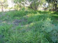 Land for Sale for sale in Phalaborwa