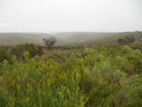 Land in Parsons Vlei