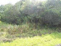 Land in Port Edward