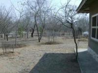 Backyard of property in Marloth Park
