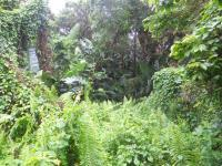 Land in Southbroom