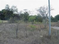 Backyard of property in Phalaborwa