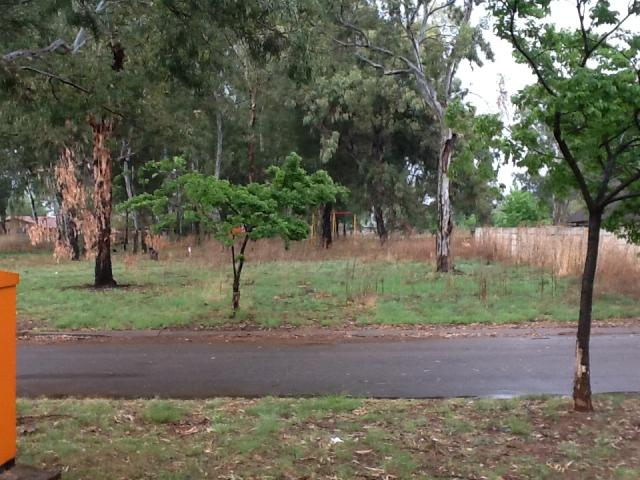 Land for Sale For Sale in Springs - Home Sell - MR081536