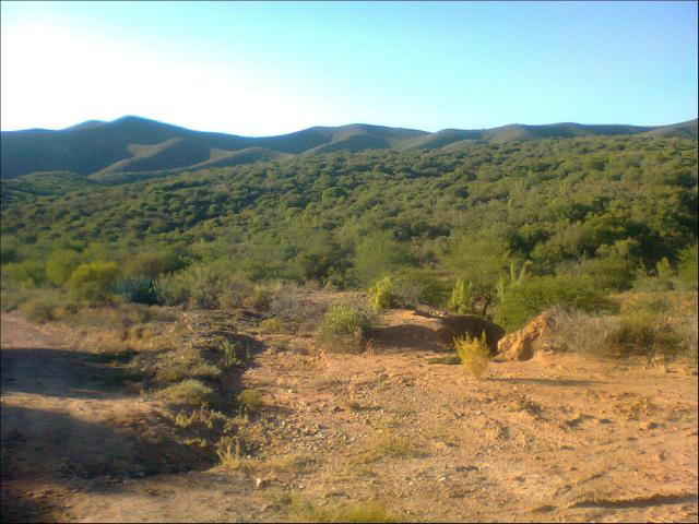 Smallholding for Sale For Sale in Oudtshoorn - Home Sell - MR081586