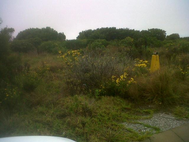 Standard Bank Repossessed Land for Sale on online auction in Jeffrey's Bay - MR081633