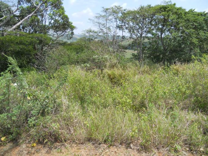 Standard Bank Insolvent Land for Sale on online auction in Port Shepstone - MR082606