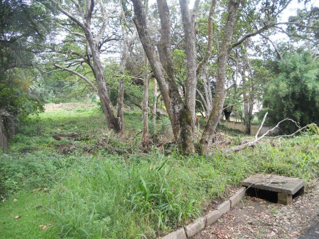 Land for Sale For Sale in Kloof  - Home Sell - MR086047