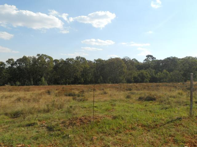 Smallholding for Sale For Sale in Heidelberg - GP - Private Sale - MR088283