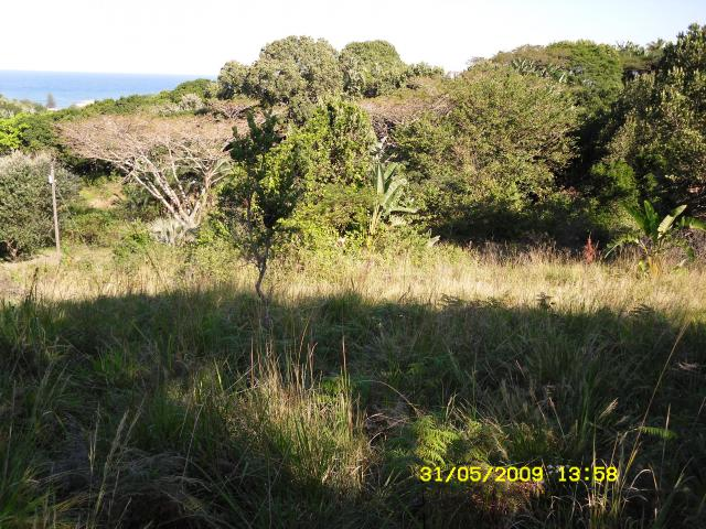 Land for Sale For Sale in Hibberdene - Private Sale - MR088654