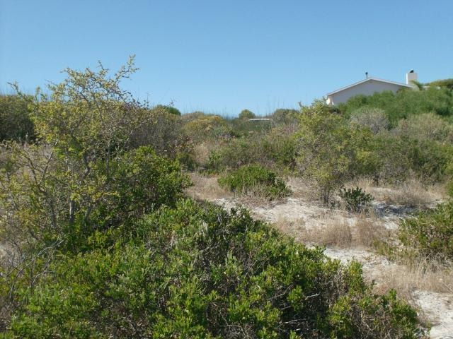 Land For Sale in Langebaan - Home Sell - MR089209