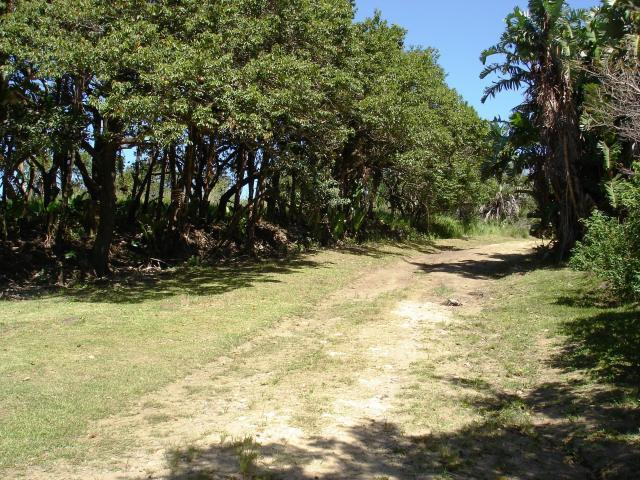 Land For Sale in Port Edward - Home Sell - MR092959