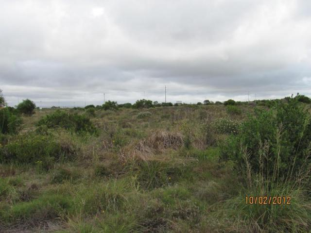 Land for Sale For Sale in Jeffrey's Bay - Home Sell - MR093197
