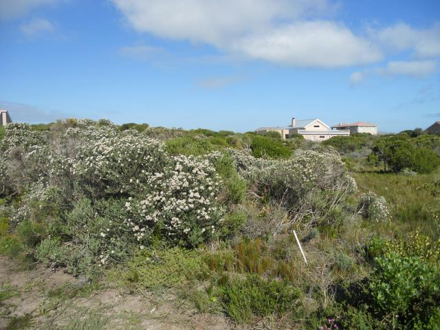 Land For Sale in Gansbaai - Home Sell - MR093239
