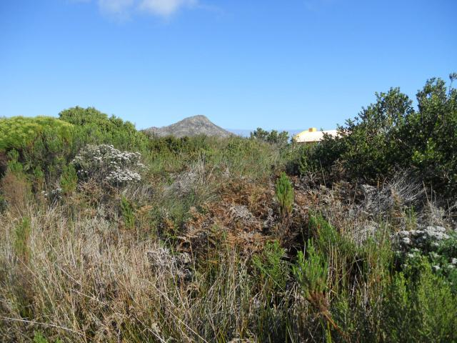 Land for Sale For Sale in Pringle Bay - Private Sale - MR093240