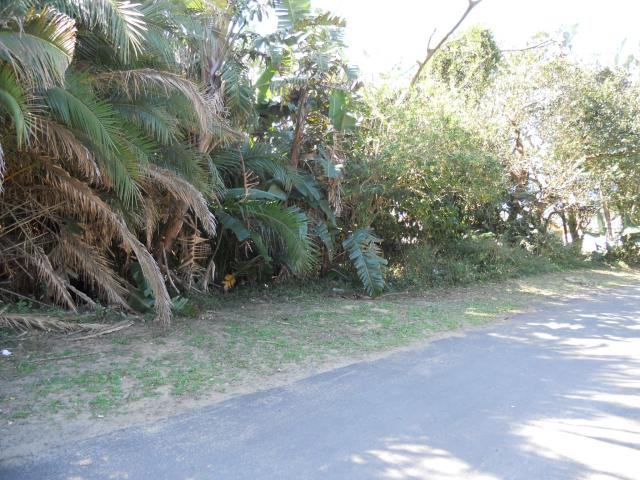 Land for Sale For Sale in Hibberdene - Private Sale - MR093631