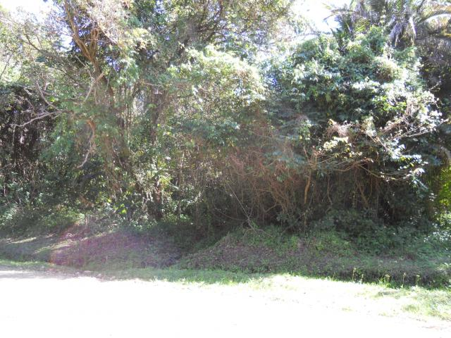Land for Sale For Sale in Hibberdene - Private Sale - MR093632
