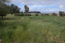 Land for Sale for sale in Hopefield