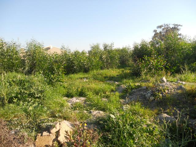 Land for Sale For Sale in Kuils River - Private Sale - MR094870