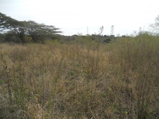 Land for Sale For Sale in Pietermaritzburg (KZN) - Home Sell - MR095849