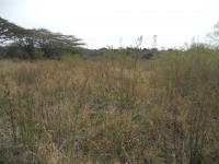 Land in Pietermaritzburg