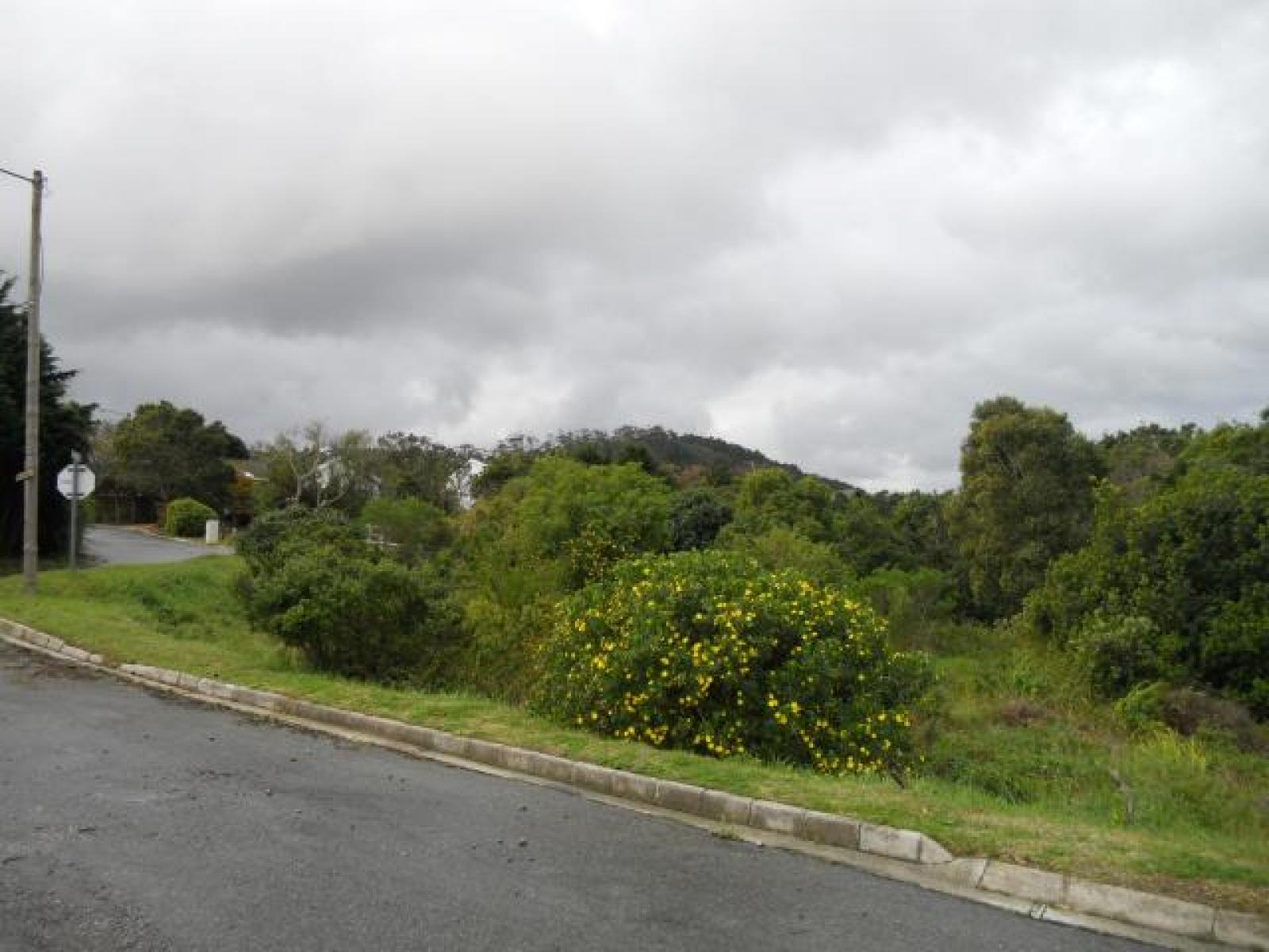 Front View of property in Sedgefield