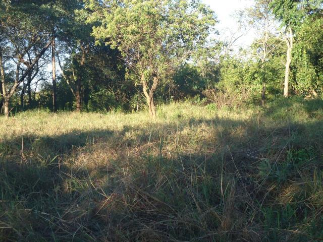Land for Sale For Sale in Hazyview - Private Sale - MR096900